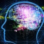Ciência - Ser curioso pode impulsionar a sua memória