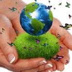 Meio ambiente - Educação Ambiental - Uma Lição para a Vida