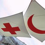 Internacional - Cruz Vermelha diz que ebola poderá ser controlado em quatro ou seis meses