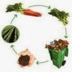 Utilidade Pública - O desperdício alimentar e o acúmulo de resíduos