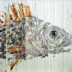 Veja esta incrivel escultura de vidro rotativa