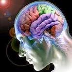 15 incríveis curiosidades sobre o seu cérebro