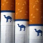Negócios & Marketing - Camel Reynolds vai proibir funcionários de fumarem em local de trabalho