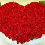 Buquê de rosas: O maior buquê do mundo