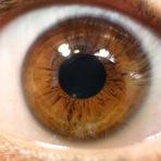 Saúde - Mitos e Verdades sobre os olhos e a visão