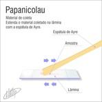 Ciência - Papanicolau - exame