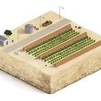 Projeto gera energia e alimentos de forma sustentável em desertos