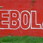 App Android ajuda a combater ebola na Nigéria