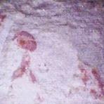 Curiosidades - Estas pinturas da Pirâmide de Gizé não são vistas há 4.500 anos