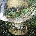 Meio ambiente: Eucalipto e cana de açúcar | Paisagismo Digital