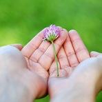 Mãos podem curar (PROVADO CIENTIFICAMENTE PELA USP)