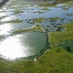 Curiosidades - Pantanal, a maior área úmida de água doce do mundo