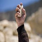 Violência - Diga NÃO ao apedrejamento, o próximo pode ser você!!! Fotos chocantes