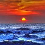 Meio ambiente - O espetáculo do mar!