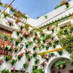 O belíssimo festival de flores dos Pátios de Córdoba