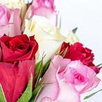 Flores online com frete grátis