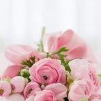 Cestas com flores: uma receita irresistível para demonstrar seu amor.