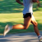 Como os exercícios físicos afetam a Homeostase