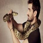 Animais - Sucuri 'come' cineasta vivo em programa de TV