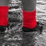 Contos e crônicas - O Meninos Das meias Vermelhas, Carlos Heitor Cony