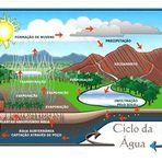 O ciclo da água - Por Maurício Andrés Ribeiro