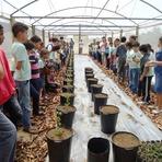 Meio ambiente - Cerrado ganha novos protetores em Goiás