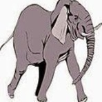 De onde será que vem os Elefantes!