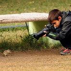 Fotos - Espanhol de 9 anos se torna Jovem Fotógrafo da Vida Selvagem de 2014
