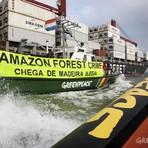 Meio ambiente - Carregamento de madeira ilegal da Amazônia está a caminho da Europa