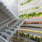 Decoração Comestível - Como fazer uma Horta em Casa