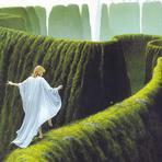 O caminho do Senhor