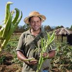 Agricultores do Rio Grande do Norte vão receber o pagamento Garantia Safra