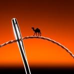 Reflexão – Camelo em buraco de agulha