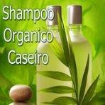 Saúde - KDVC - Como fazer shampoo organico caseiro