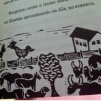 Contos e crônicas - O Bordado,A Pantera Negra, Raimundo Carrero e Ariano Suassuna
