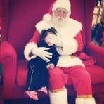 Curiosidades - Velhinho mau:Papai Noel cobre rosto de criança após mãe se recusar a pagar foto