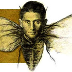 Educação - A Metamorfose - Franz Kafka - Ebook