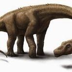 Encontrado o mais Completo Fóssil de Dinossauro Gigante