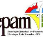 Apostilas para concurso da FEPAM - Rio Grande do Sul