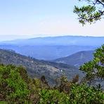 Serra do Buçaco - Vista do Miradouro da Cruz Alta