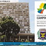 Apostila Processo seletivo Prefeitura de Campinas para Agente Comunitário de Saúde - Edital 2014