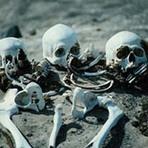 Porventura viverão estes ossos?