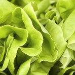 Saúde - Orgânicos podem ser mais prejudiciais que alimentos com agrotóxicos