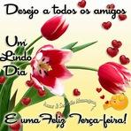 Desejo a todos amigos um lindo dia, e uma feliz terça-feira!