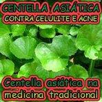 Ciência - Centella Asiática no combate a celulite