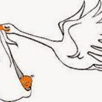 Curiosidades - Por que a cegonha é símbolo de gravidez?