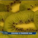 Kiwi: Conheça todos benefícios dessa fruta poderosa