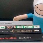Livros - Leituras de novembro + Atualizações