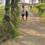Quebrando Mitos, Caminhada Não Emagrece