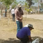Internacional - Autoridades no México elogiam Testemunhas de Jeová por limpeza de centro esportivo